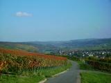 ... und immer einen tollen Blick auf Markelsheim und die Weinberge im Taubertal