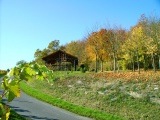 Rasthütte am Weinlehrpfad