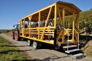 """""""Gelber Wagen"""" unterwegs im Weinberg"""